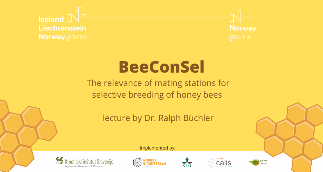 The relevance of mating stations for selective breeding of honey bees