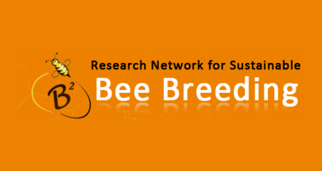 Research Network for Sustainable Bee Breeding